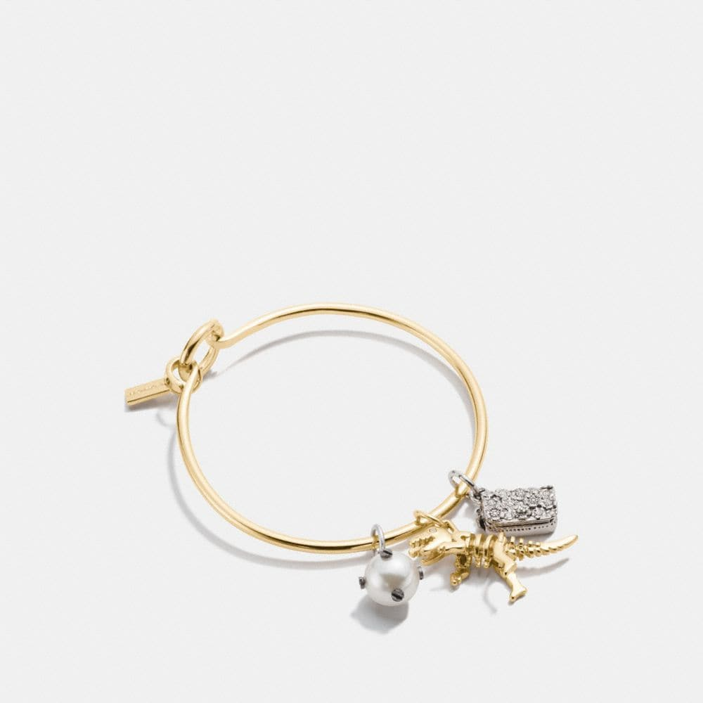 REXY CHARM COLLECTIBLE HOOP BANGLE SET