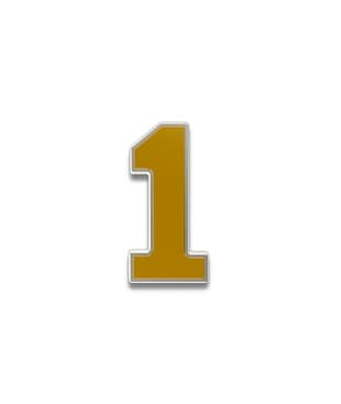 Number 1 Souvenir Pin