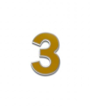 Number 3 Souvenir Pin