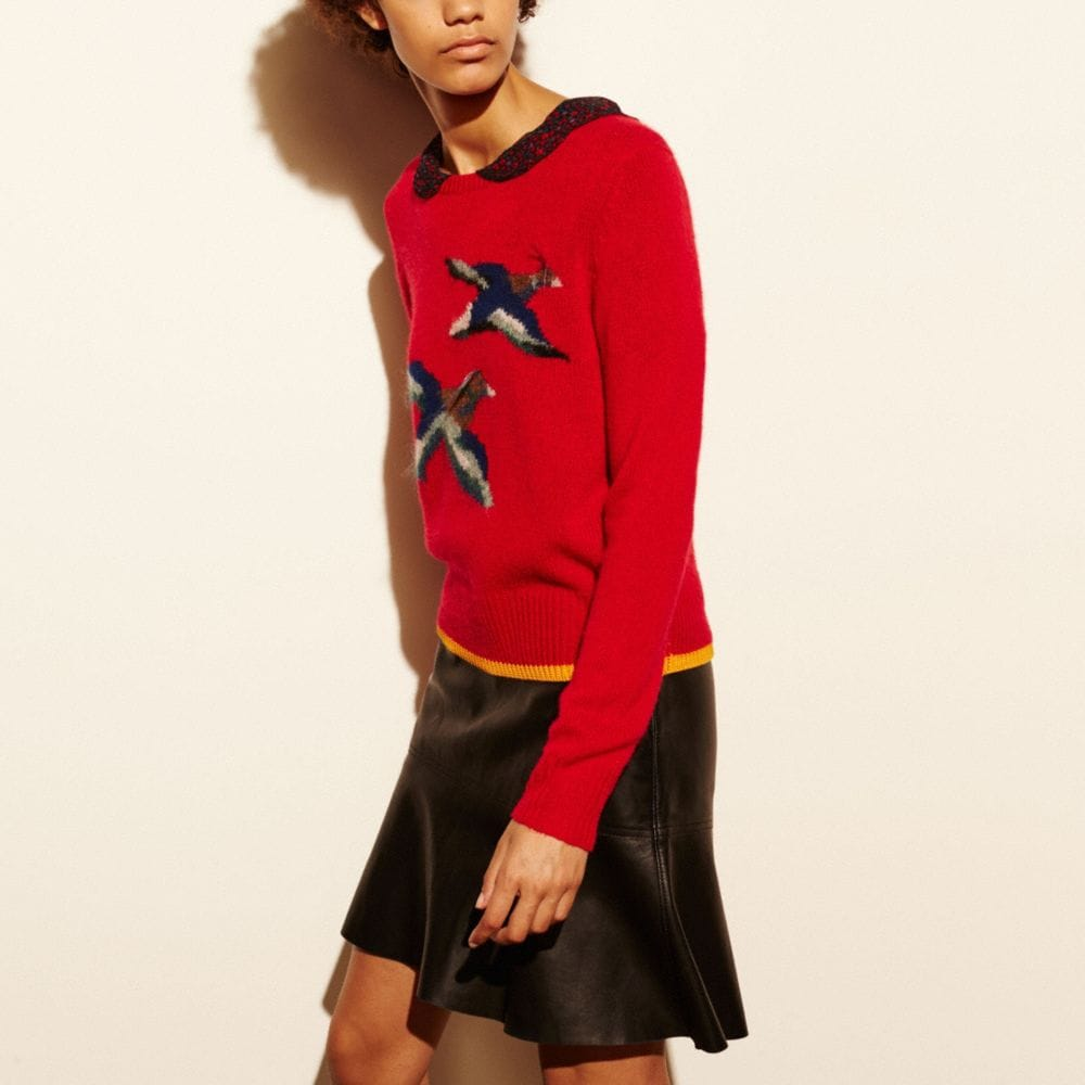 BIRD INTARSIA SWEATER
