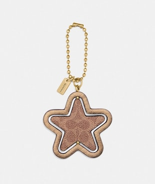 SPINNING STAR HANGTAG