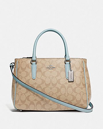 SURREY CARRYALL IN SIGNATURE CANVAS