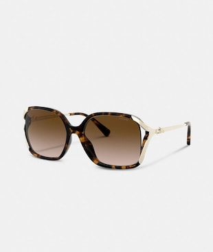 OVERSIZED HORSE AND CARRIAGE SUNGLASSES